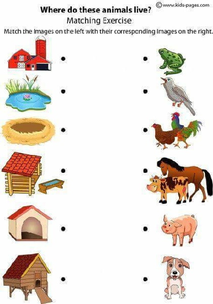 Learn animal sounds game free