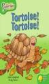 Tortoise Tortoise