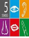 Your Five Senses
