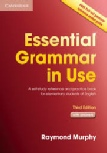 Essential Grammer in use(third edition)